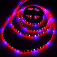 2Pc morsen®5m светодиодные гибкие полосы растут свет Без водонепроницаемого клея DC12V привело цветение лампы зеленый дом посадки 04923684