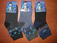 Детские махровые носочки Алия. р. 26- 31. Мальчик