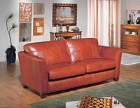 Диван кожаный JAMES мод.406, фото 1