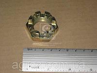 Гайка М24 кулака поворотного ГАЗ 3302,31029 (пр-во г.Кр.Этна) 292957-П29