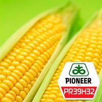 Семена кукурузы PR39H32