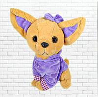 Детская мягкая игрушка,чичилав собака,фиолетовая