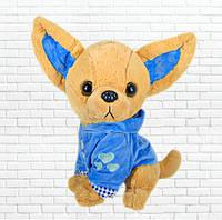 Детская мягкая игрушка,чичилав собака,голубая
