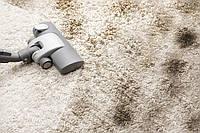 Додаткові послуги: хімчистка коврів (на дому)