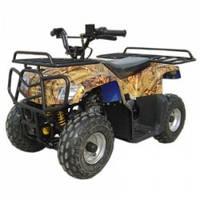 Квадроцикл бензин OPT-BK-HL-A420 110CC ATV ( (Тип двигателя: 110cc, одиночный цилиндр с воздушным охлаждением, 4-тактный, 2передачи,тормозная система: