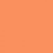 Экономпанель ДСП 18 Оранж 3113