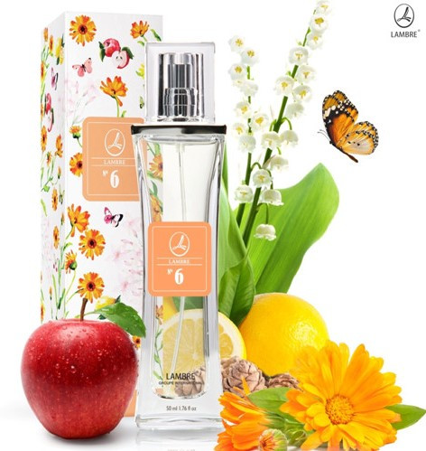 """Женская парфюмированная вода """"Eclat D'Arpege (Lanvin)"""" Lambre / Ламбре №6 NEW, 50 мл"""