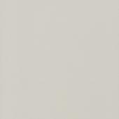 Экономпанель ДСП 18 Серый 112