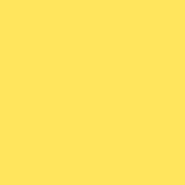 Экономпанель ДСП 18 Танжерин 3054