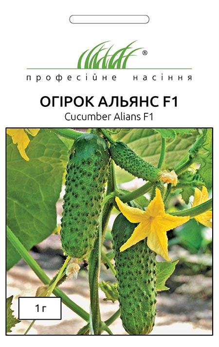 Семена огурцов Альянс F1 1 г, Bejo Zaden