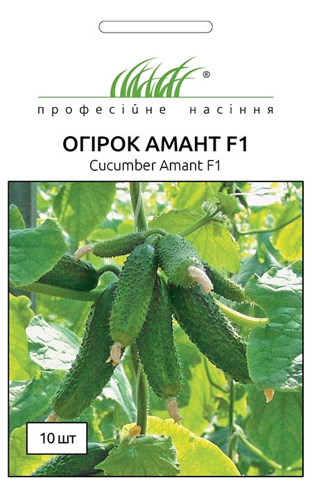 Семена огурцов Амант F1 10 шт, Bejo Zaden