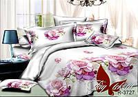 Полуторный комплект постельного белья ранфорс R3727 ТM TAG