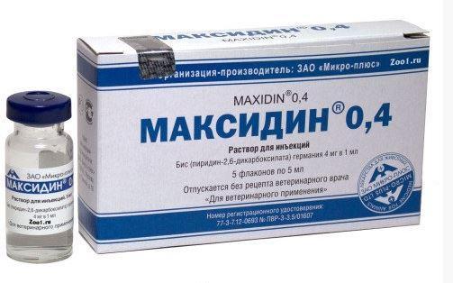Максидин ин. 0,4%, 5мл