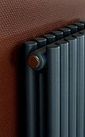 Дизайнерский вертикальный радиатор Praktikum Betatherm, фото 1