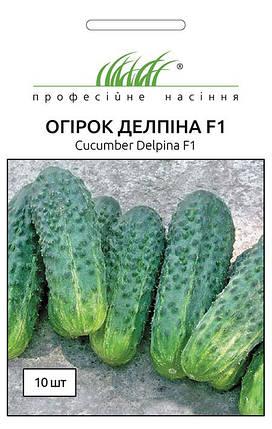 Семена огурцов Делпина F1 10 шт, Nunhems Zaden, фото 2