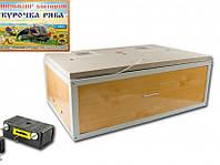 Инкубатор бытовой универсальный O-MEGA 60 яиц (92-0816)