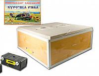 Инкубатор с автоматическим переворотом O-MEGA 80 яиц (92-0820)