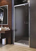 Душевая дверь Aquaform Nigra графит 90х185