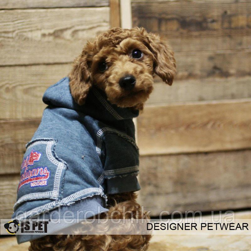 """Батник  """"Маленький хулиган"""" для собак Is Pet. Одежда для собак"""