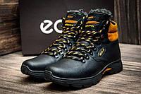 Мужские  зимние кожаные ботинки Ecco Tracking Brown Night