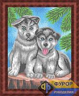 Схема для вышивки бисером - Собачки в елках, Арт. ЖБп3-103
