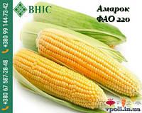 Семена кукурузы гибрид АМАРОК (ФАО 220) ВНИС