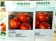 Томат Беллароса F1 (Sakata, Япония) 1000 сем, фото 1