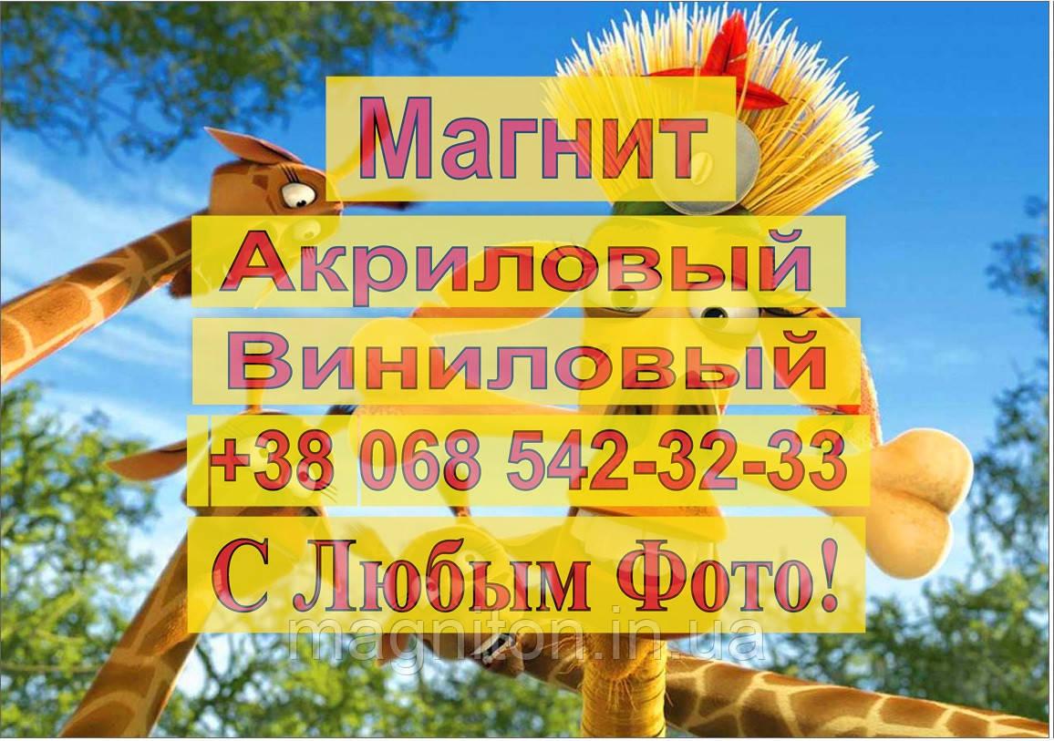 Магниты Детские МАДАГАСКАР 4