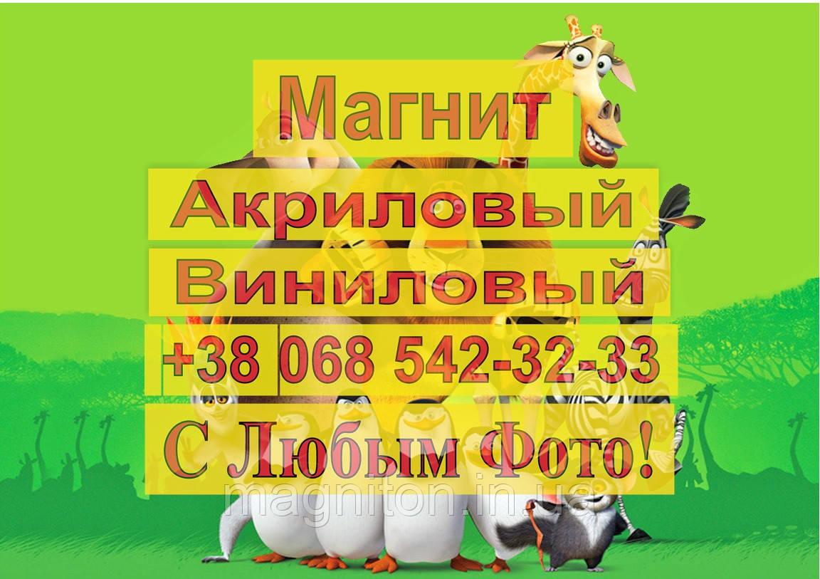 Магниты Детские МАДАГАСКАР 10
