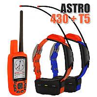 Garmin Astro 430 + 2 ошейника Garmin T5/T5 mini. Навигатор для охоты., фото 1