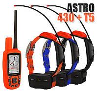 Garmin Astro 430 + 3 ошейника Garmin T5/T5 mini. Навигатор для охоты, фото 1