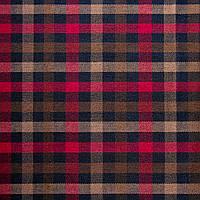 Ткань шотландка, фото 1