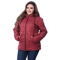 Куртка демисезонная женская Батал по низким ценам K227G