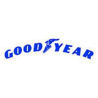 Шины летние Goodyear