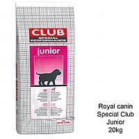 Сухой корм для щенков крупных и гигантских пород Royal Canin Club Junior 20КГ