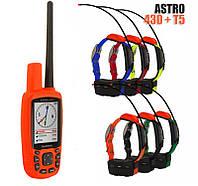 Garmin Astro 430 + 6 ошейников Garmin T5/T5 mini. Навигатор для охоты, фото 1