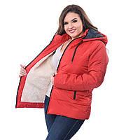 Куртка теплая женская батал на овчинке   K227HG