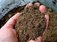 Утилизация промасленного песка