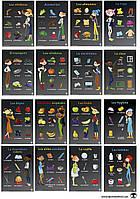 Настенный учебный плакат  на испанском языке (набор 16 шт. размер А-2)