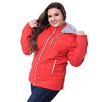 Куртка женская большого размера K1227G