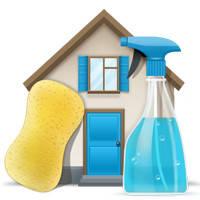 Моющие средства для домашнего использования