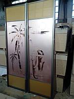 Двери на шкаф-купе «Слон»