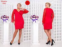 Приталенное платье батал с кружевными рукавами 2025255
