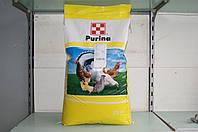 Готовый корм для домашних кур-несушек Optima 25 кг