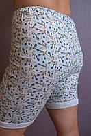 Трусы женские панталоны хлопковые длинные пролиски