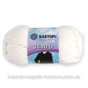 Пряжа Kartopu Tempo белый