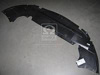 Защита бампера переднего Ford Focus 2008-10 (пр-во TEMPEST)