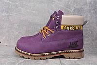 Ботинки женские Caterpillar D2432 фиолетовые