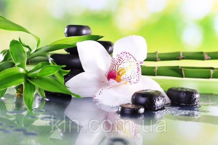 Алмазная вышивка квадратные камни Бамбук и орхидея 50 х 30 см (арт. FS657)