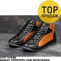 Мужские зимние кроссовки Lacoste, черные с коричневым / кроссовки мужские Лакоста, натуральная кожа, стильные